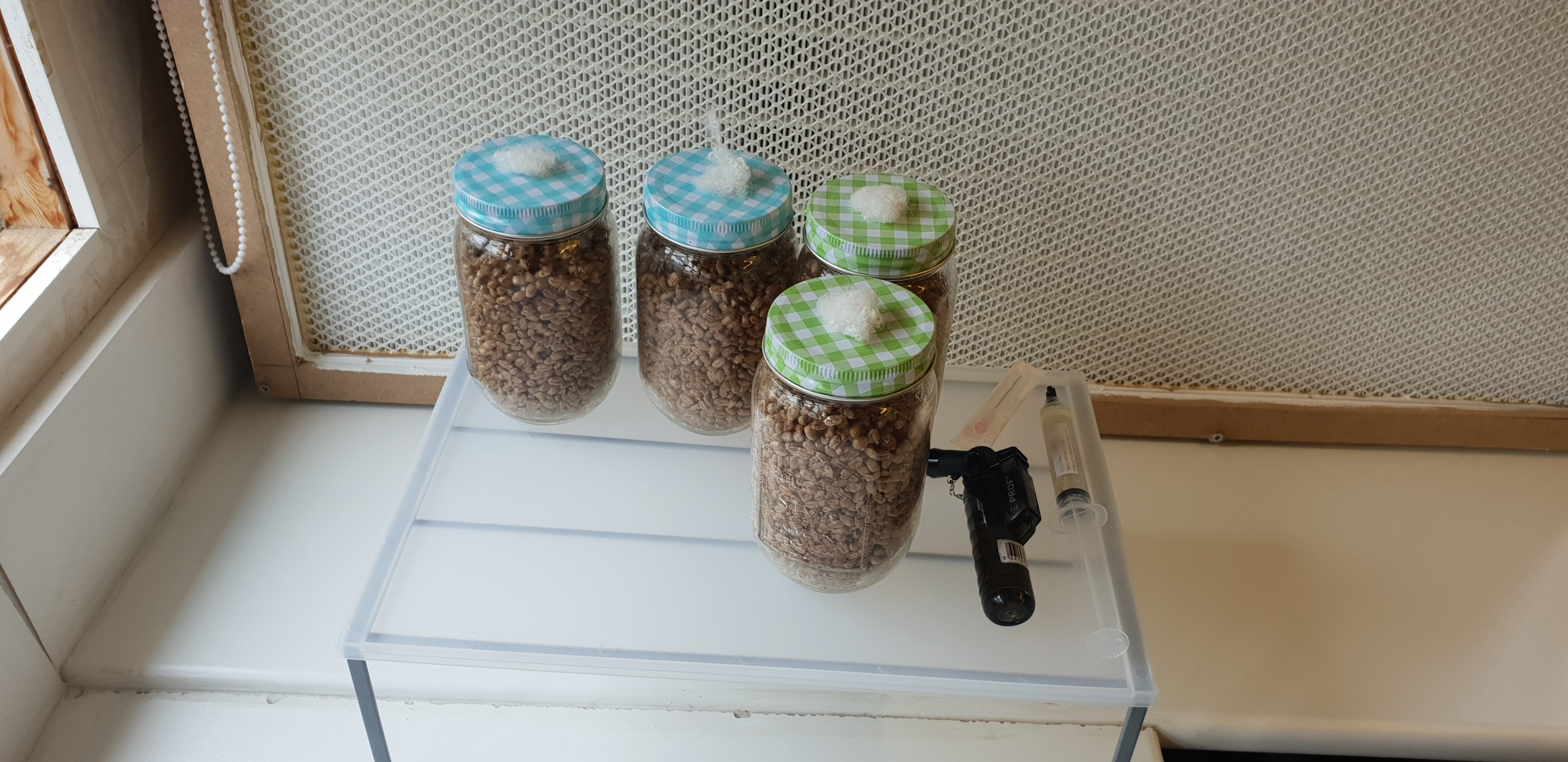 Jars Infront Of HEPA Filter With Lions Mane Liquid Culture | Archer's Mushrooms Blog About Using Wilko Jars To Inoculate Mushroom Grain