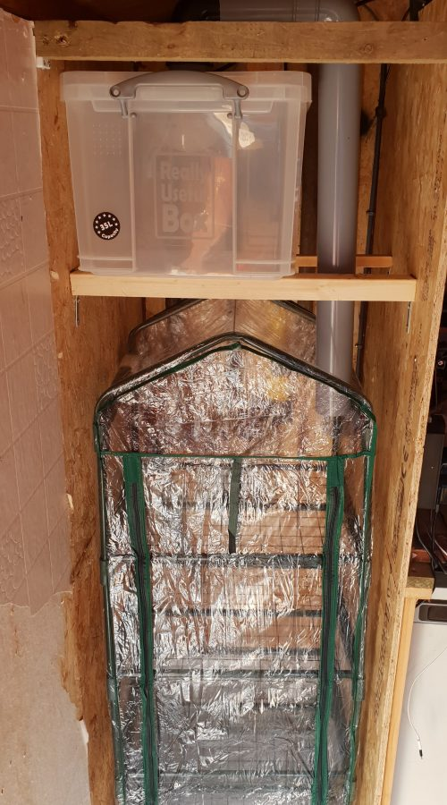 DIY Fruiting Chamber Humidity Setup | Archers Mushrooms | Mushroom Blogs | Mushroom Growing | Mushroom Tips | Mushroom Business