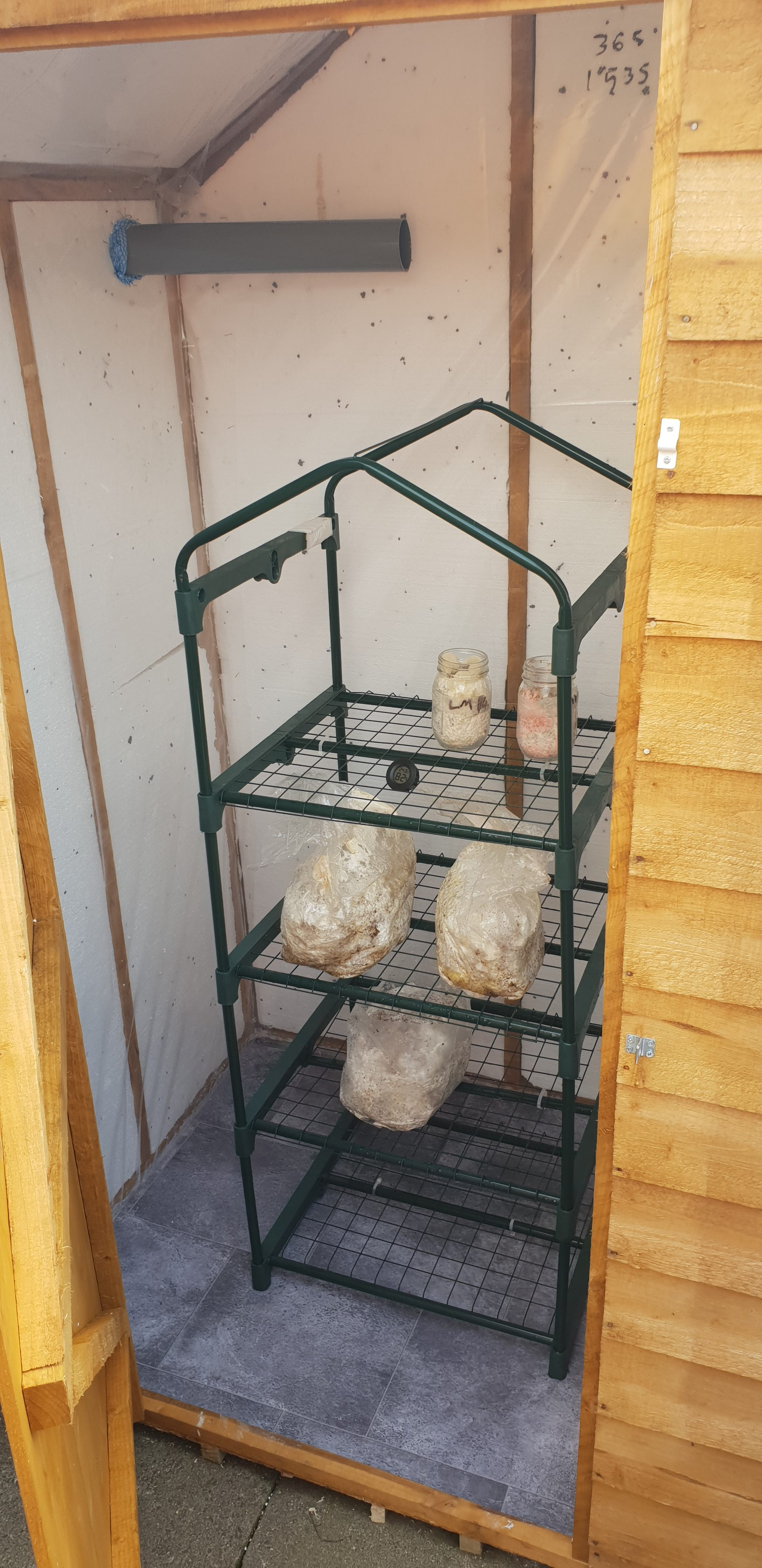 Homemade Shed Fruiting Chamber | Archers Mushrooms | Mushroom Blogs | Mushroom Growing | Mushroom Tips | Mushroom Business