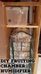 DIY Fruiting Chamber Humidity Setup | Archers Mushrooms | Mushroom Blogs | Mushroom Growing | Mushroom Tips | Mushroom Business