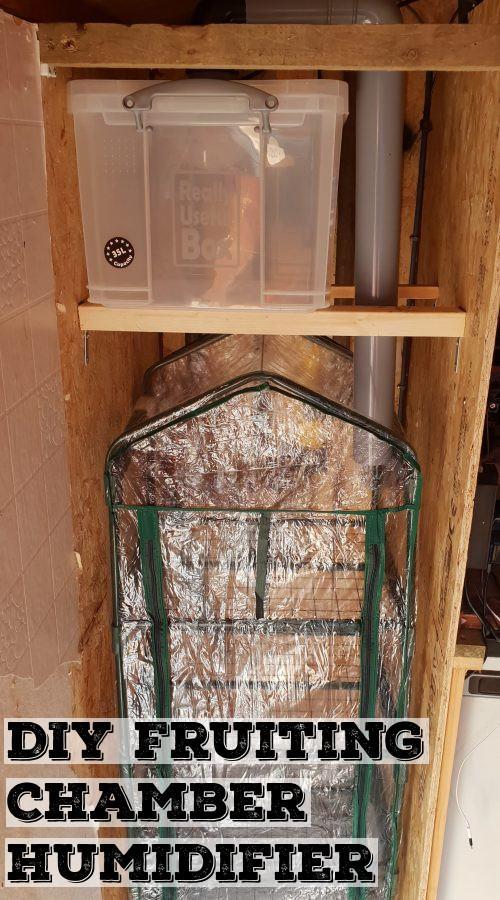 DIY Mushroom Humidifier | Archer's Mushrooms | Homemade