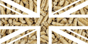 Hardwood Fuel Pellets In The UK. Where are they? | Archer's Mushrooms | Gourmet Mushrooms | UK Hardwood Fuel Pellets