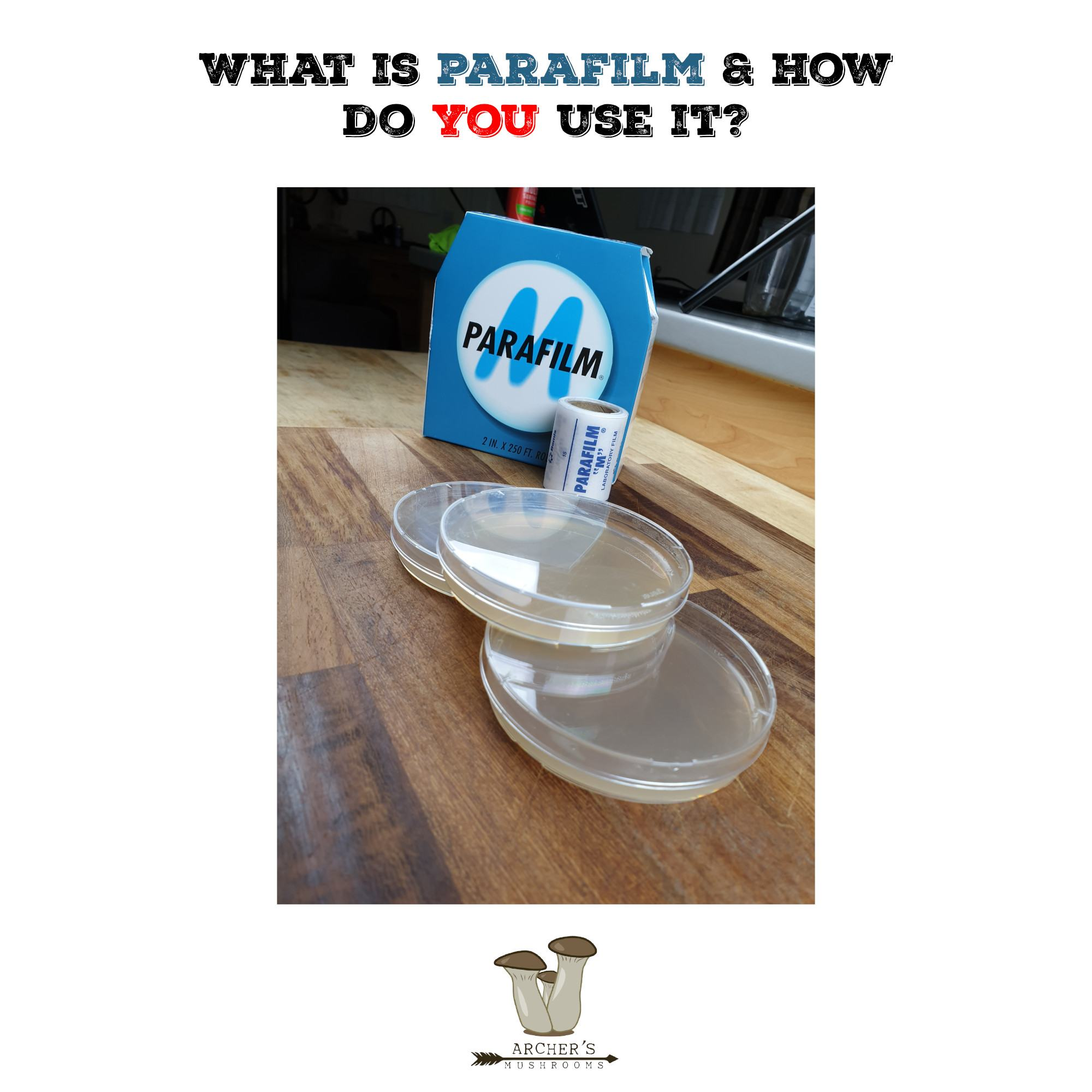 What Is Parafilm & How Do You Use It In Mushroom Growing?| Mushroom Growing | Mushroom Blogs | Mushroom Growing | Mushroom Tips | Mushroom Business