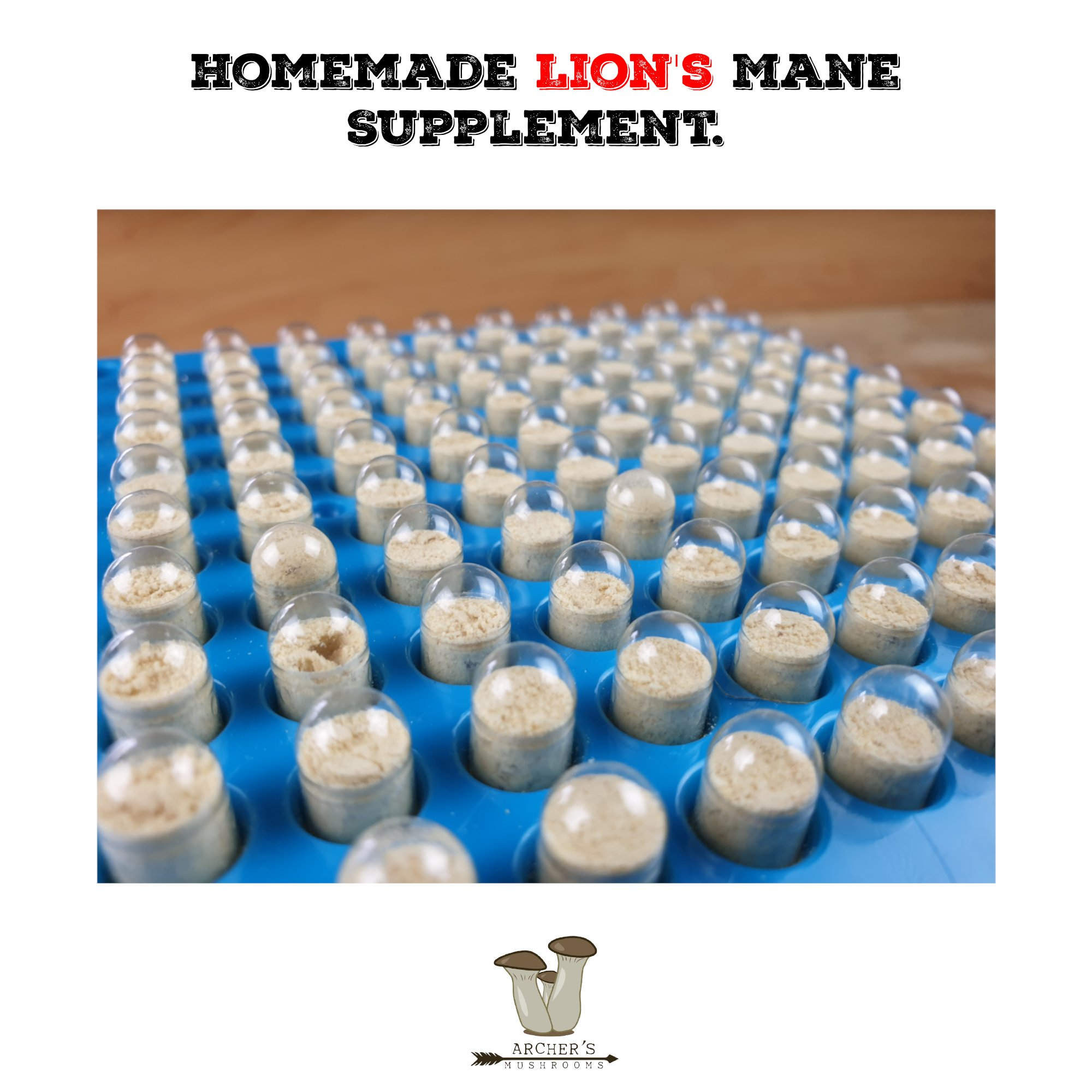 Homemade Lion's Mane Supplement. How I Made Lion's Mane Capsules.| Mushroom Growing | Mushroom Blogs | Mushroom Growing | Mushroom Tips | Mushroom Business