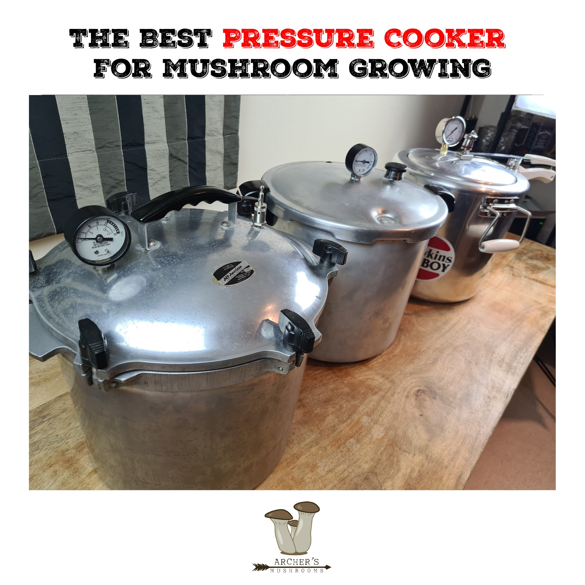 The Best Mushroom Growing Pressure Cooker | The Best Pressure Cookers FOr Mushroom Growing | Top 4 Best Pressure Cookers For Mushroom Growing | Mushroom Growing | Mushroom Blogs | Mushroom Growing | Mushroom Tips | Mushroom Business